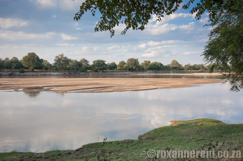 Luangwa River, South Luangwa National Park, Zambia