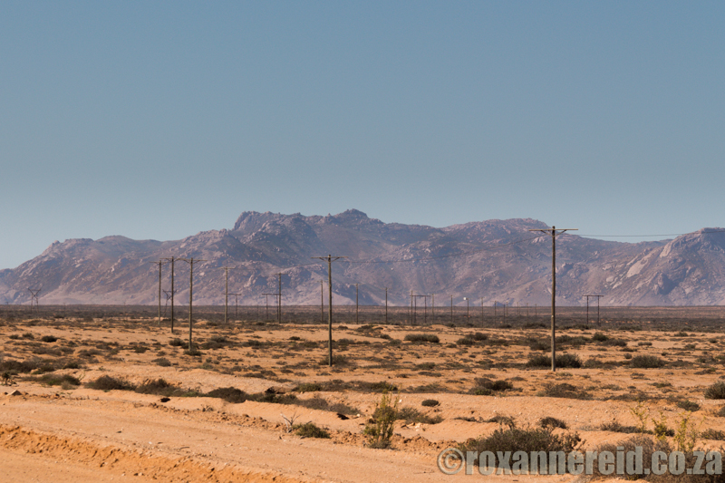 Telephone poles, Richtersveld