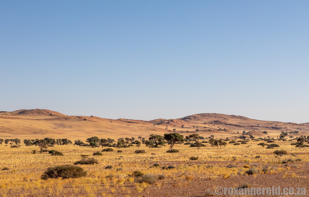 Desert Grace: one of the most stylish Sossusvlei lodges