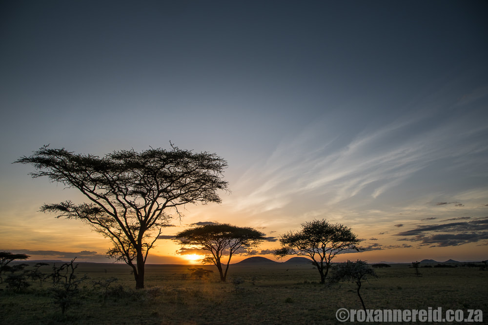 Sunset, ol Donyo Lodge in Kenya's Chyulu Hills