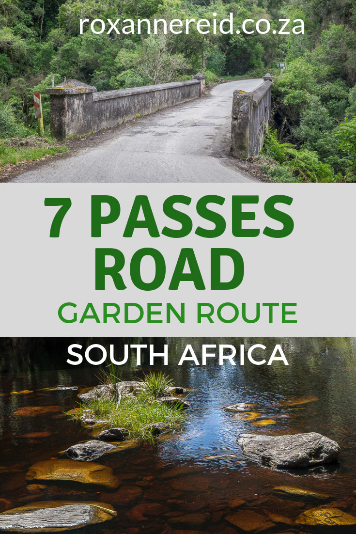 The Seven Passes road between George and Knysna on the Garden Route is a must-do drive, among the most beautiful mountain passes in South Africa. #mountainpasses #SouthAfrica #Africatravel #SevenPasses #GardenRoute #WoodvilleBigTree