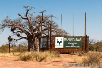 Things to do at Mapungubwe National Park