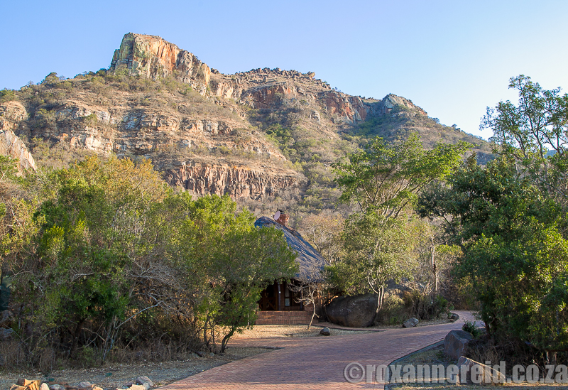 Ntshondwe, Ithala Game Reserve accommodation, KZN