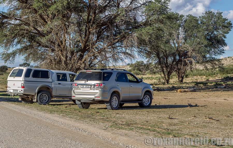 Going offroad in the Kgalagadi