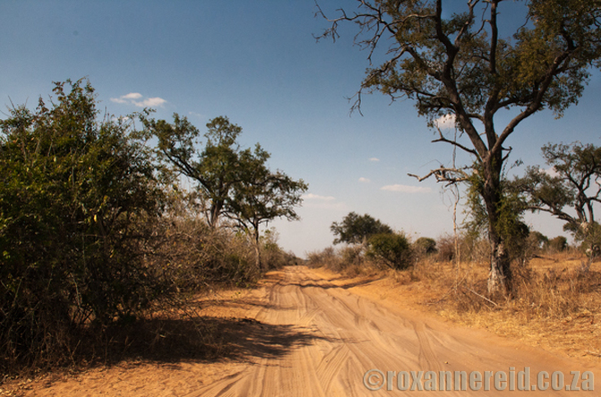 Sandy roads, Chobe National Park, Botswana