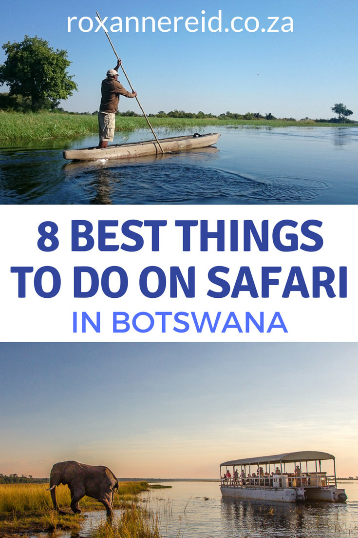 8 best things to do on safari in Botswana's Okavango, Chobe, Kalahari and Makgadikgadi. Okavango mokoro trip, Chobe sunset river cruise, see Okavango from the air, Botswana game drive, Botswana bush walk, Makgadikgadi quad biking, Bushman culture, Botswana responsible tourism. #travel #africa