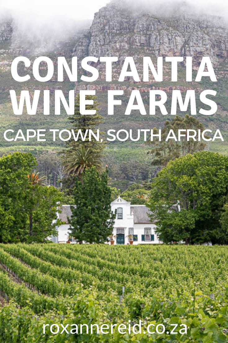 Planning some Constantia wine tasting? Find out about these Constantia wine farms and why to visit these Cape Town wineries. Visit the Constantia wine route, taking in Constantia vineyards like Beau Constantia, Groot Constantia, Klein Constantia, Buitenverwachting, Steenberg, Constantia Uitsig, Eagles' Nest, Constantia Glen and Silvermist. Stop at fine Constantia restaurants like La Colombe, Chef's Warehouse and Tryn.