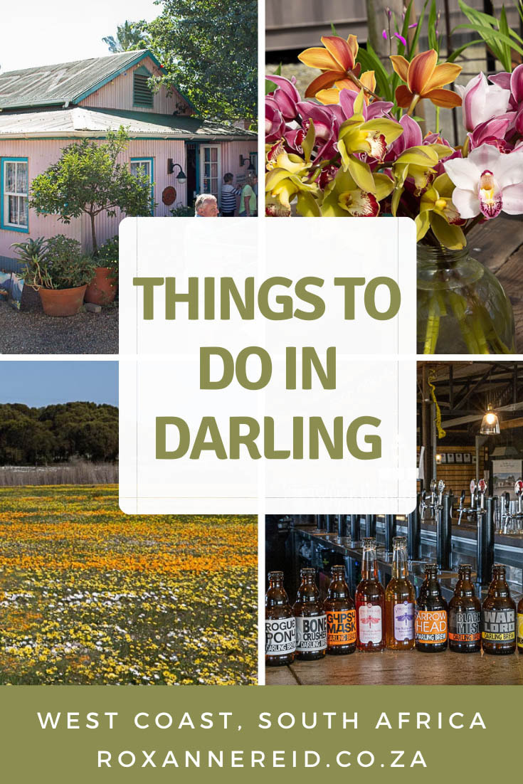 Things to do in Darling out of flower season, Cape West Coast #SouthAfrica #westcoast