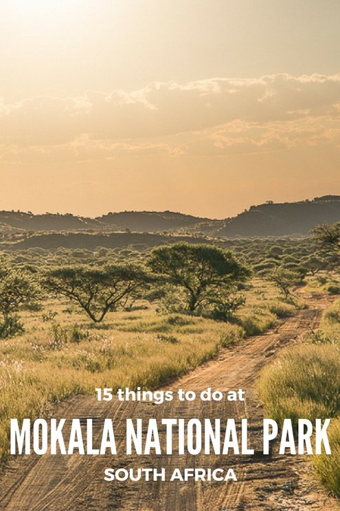 15 things to do at Mokala National Park, Northern Cape #SouthAfrica #travel #nationalparks