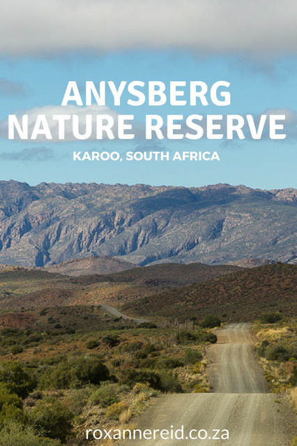 Feel nature's rhythm at Anysberg Nature Reserve in the Karoo #SouthAfrica #travel #nature