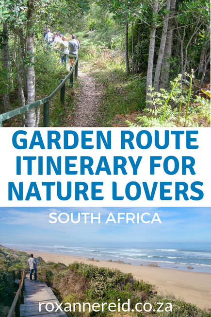 Do you get a kick from nature? You'll love this Garden Route itinerary for nature lovers, showing highlights of the Garden Route, nature things to do on the Garden Route in Wilderness, Knysna, Tsitsikamma and the Garden Route Natiional Park, South Africa. Pin this Garden Route South Africa itinerary for later. #gardenroute #southafrica #nature #gardenroutehighlights #gardenRouteitinerary
