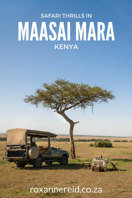 Safari thrills at Mara Expedition Camp, Maasai Mara, Kenya