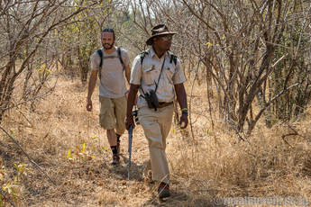 Walking safari at Sapi and Mana Pools Zimbabwe