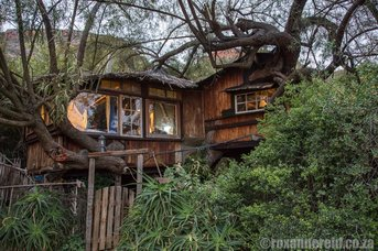 Speekhout tree house in the Baviaanskloof, Eastern Cape, South Africa