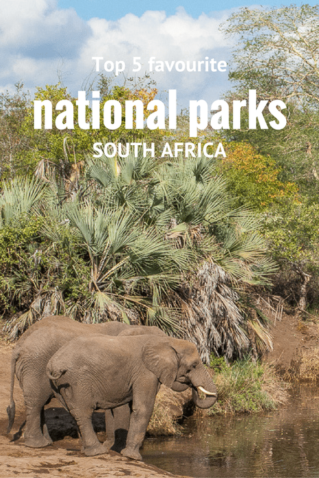 Top 5 favourite national parks in #SouthAfrica #nationalparks #travel #safari #wildlife