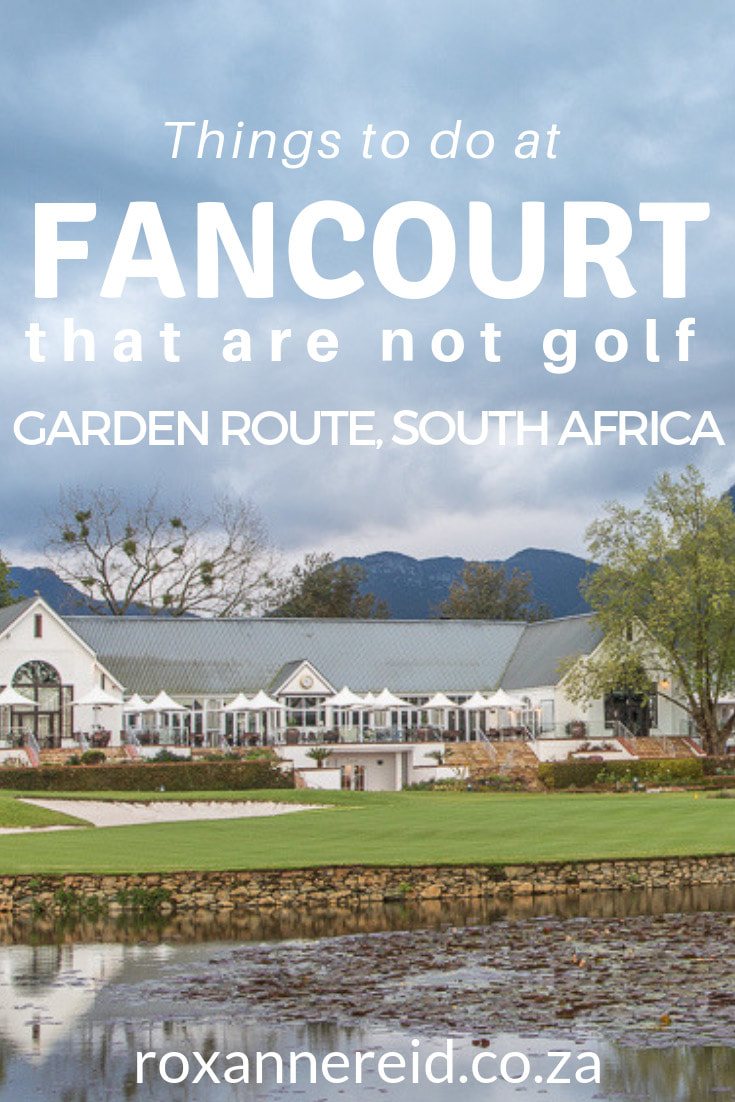 When you hear the word Fancourt you think of golf. And Fancourt golf is famous for its three top-rated golf courses. But there are other things to do at Fancourt Hotel in George on the Garden Route, South Africa. Think walking, cycling, Roman baths, spa, gym, swimming, Fancourt restaurants like Henry White's. Further afield are mountain passes, wine-tasting, strawberry-picking, Cango Caves, Oudtshoorn and more. #Fancourt #FancourtHotel #Fancourtgolf #FancourtHotelGeorge #Georgeaccommodation