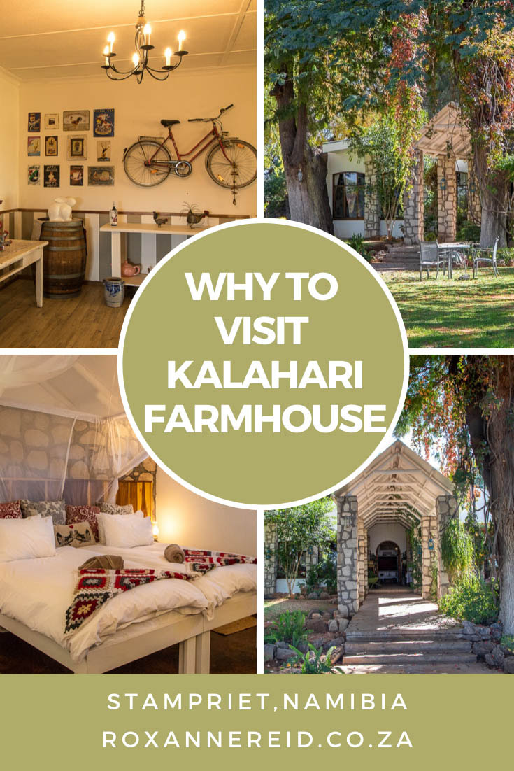 Visit Kalahari Farmhouse in the Kalahari of south-east Namibia and discover a Stampriet lodge with a self sufficiency centre and a farm-to-fork ethos. Relax, enjoy the gardens, go birdwatching, for a nature drive or walking trail, swim in the pool, go stargazing, enjoy good food. #Namibialodges #KalahariNamibia #Kalaharilodge #Kalahariaccommodation #Stamprietaccommodation #KalahariFarmhouse #Stamprietlodges #Stampriet #Namibiaholidays #KalaharilodgesNamibia #Namibia #kalahari