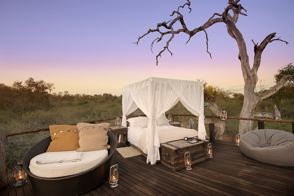 Kruger National Park honeymoon: Lion Sands