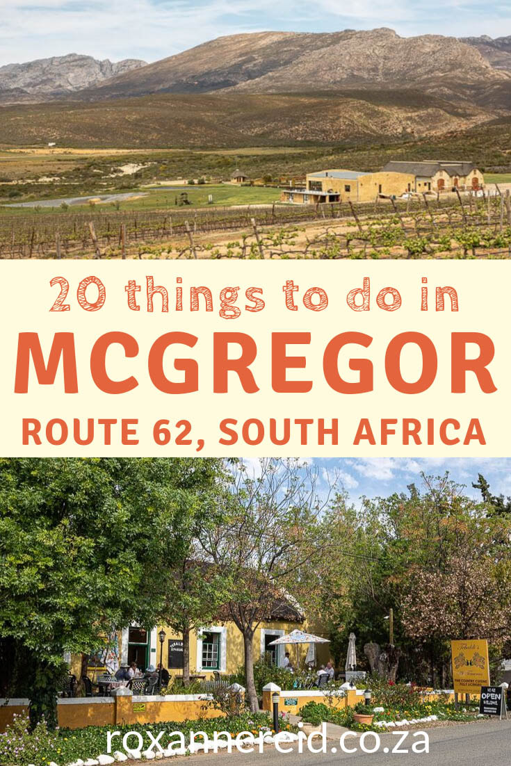 Wondering what things to do in McGregor when you visit this part of the Cape Winelands? Here are 20 things to do, from visiting McGregor Tourism info centre in McGregor village, to wine tasting, olive tasting, restaurants, hiking, cycling, heritage walks and more. Find out about McGregor accommodation and McGregor self catering accommodation here in the Robertson Valley of Route62, South Africa. #McGregorwines