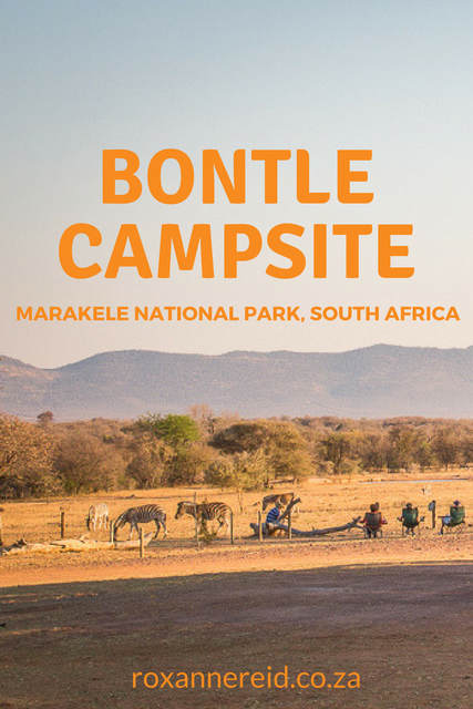 Why to stay at Bontle Campsite in Marakele National Park #SouthAfrica #safari #travel