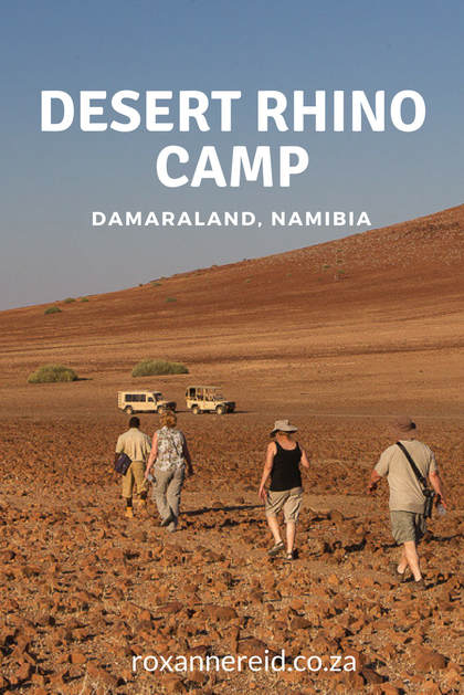 Desert Rhino Camp in Namibia's Damaraland is about more than tracking rhinos #Namibia #Africa #travel #safari
