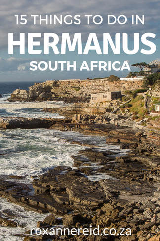 You're spoilt for choice when it comes to things to do in Hermanus on the Whale Coast, South Africa, with everything from hikes and beaches to shopping and wine-tasting as well as whale-watching. Find out 15 of the best things to do in this seaside village #travel #SouthAfrica #Hermanus