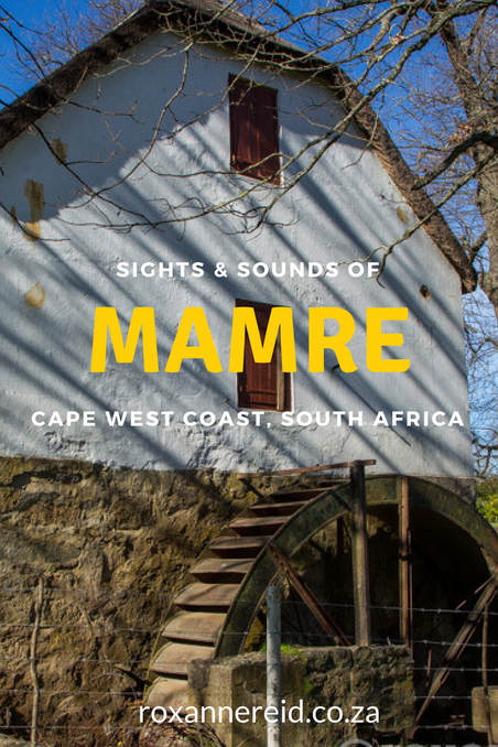 Sights & sounds of Mamre historical village, Cape West Coast #SouthAfrica #travel #heritage #mamre