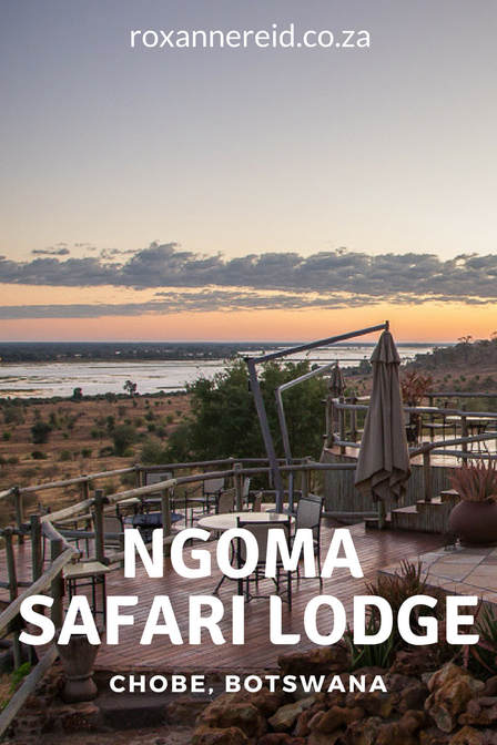 Safari for two at Ngoma Safari Lodge, Chobe, Botswana #Chobe #NgomaLodge #botswana