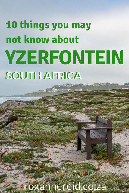 10 things you may not know about Yzerfontein, West Coast #SouthAfrica #travel #WestCoast