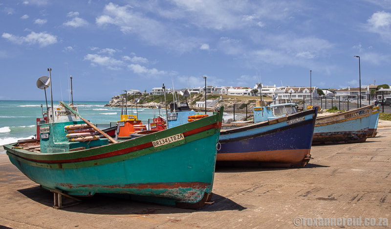 Things to do in Arniston: see the fishing boats in the harbour