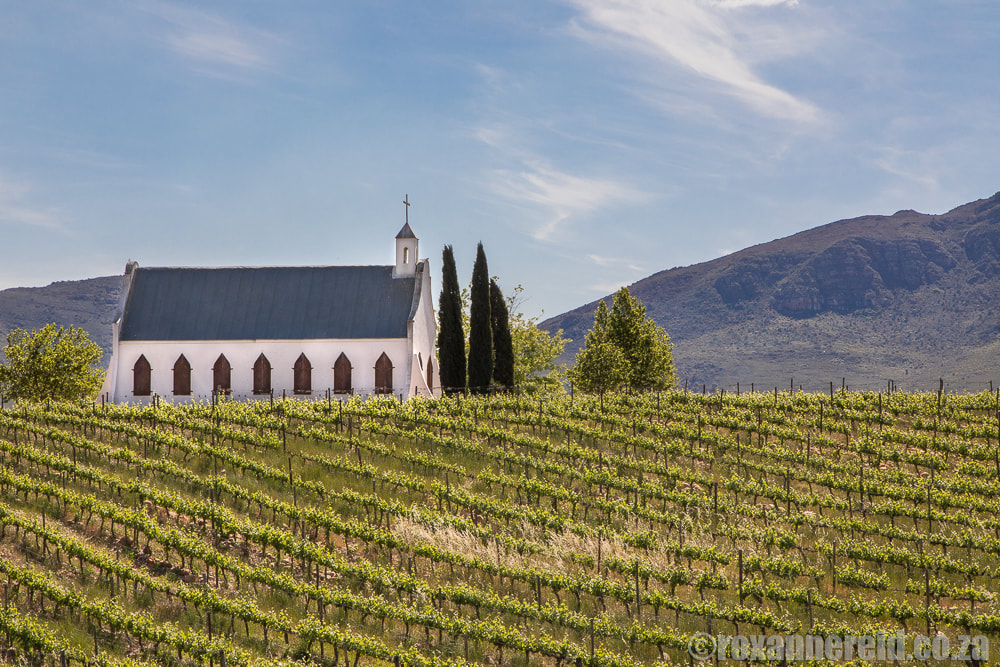 Chapel in the vineyards, Tulbagh, Cape Winelands