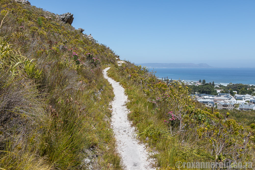 hiking path in Fernkloof Nature Reserve, Hermanus, South Africa