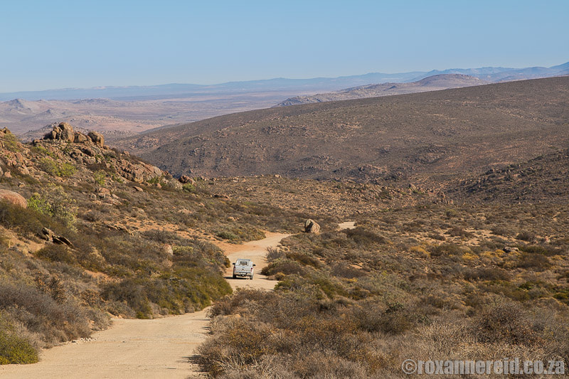 Caracal 4x4 Eco-Route in Namaqua National Park