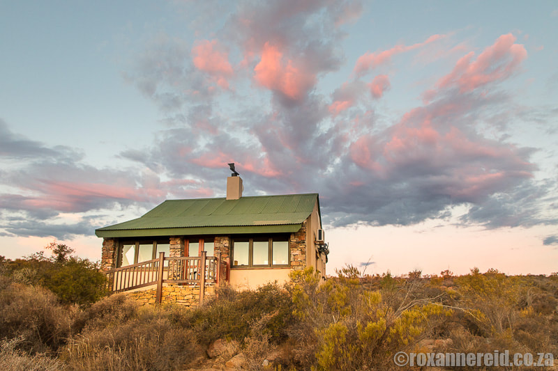 Namaqua National Park: everything you need to know