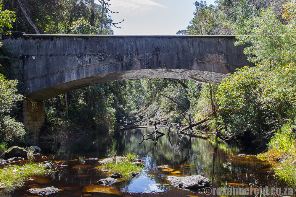 Mountain passes South Africa: the Seven Passes road, Garden Route
