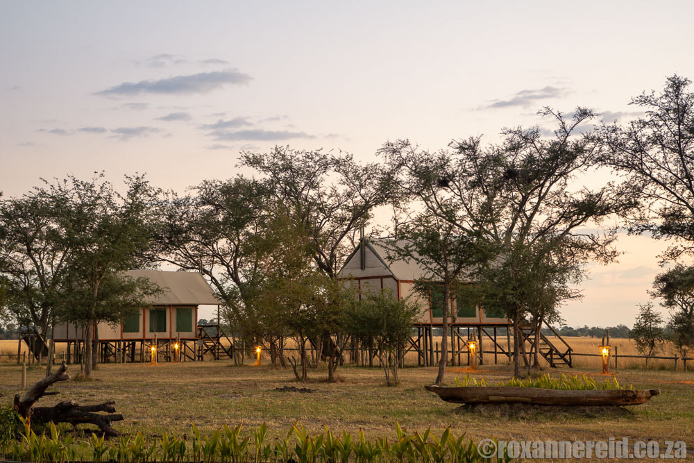 Chobe River Camp's tents look out over the Chobe River and Chobe National Park