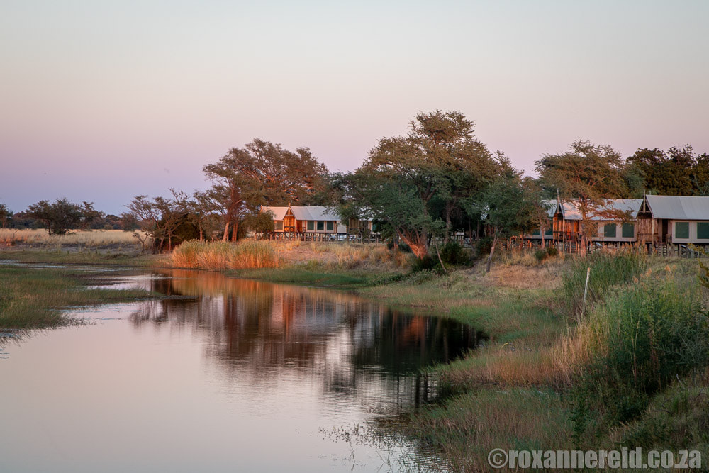 Go on a Chobe River cruise from Chobe River Camp on the Namibian side of the river