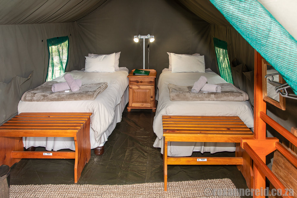 Lakeview Tented Camp, Camdeboo National Park, Graaff-Reinet accommodation