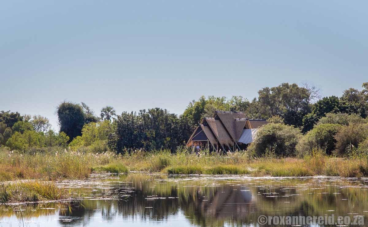 Selinda Camp in the Llinyanti for superb Botswana holidays