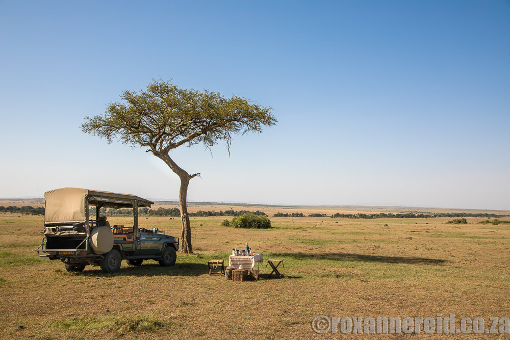 Picnic, Mara Expedition Camp, Maasai Mara, Kenya