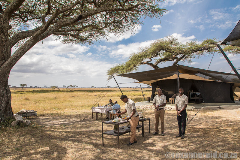Look for camps that support responsible tourism in the Serengeti, Tanzania