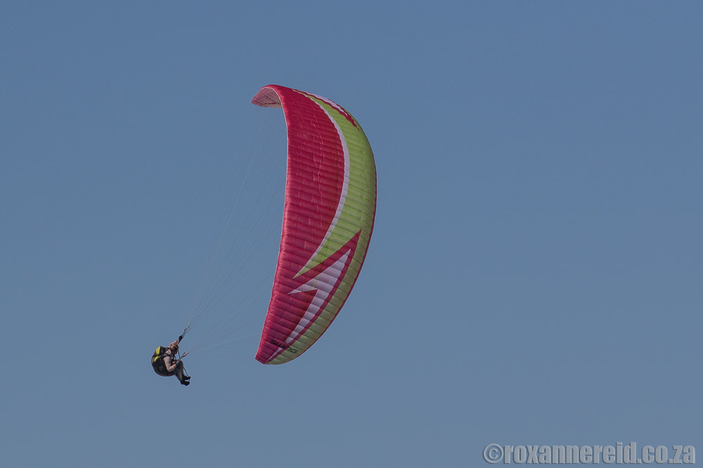 Things to do in Wilderness South Africa: paragliding
