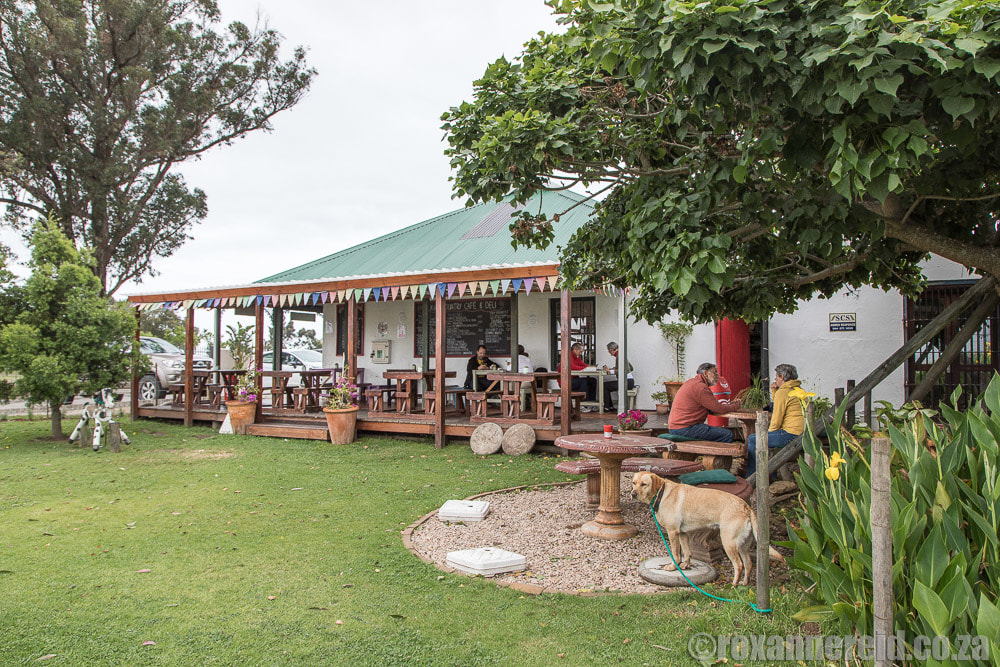 Garden Route restaurants: Hoekwil Country Cafe