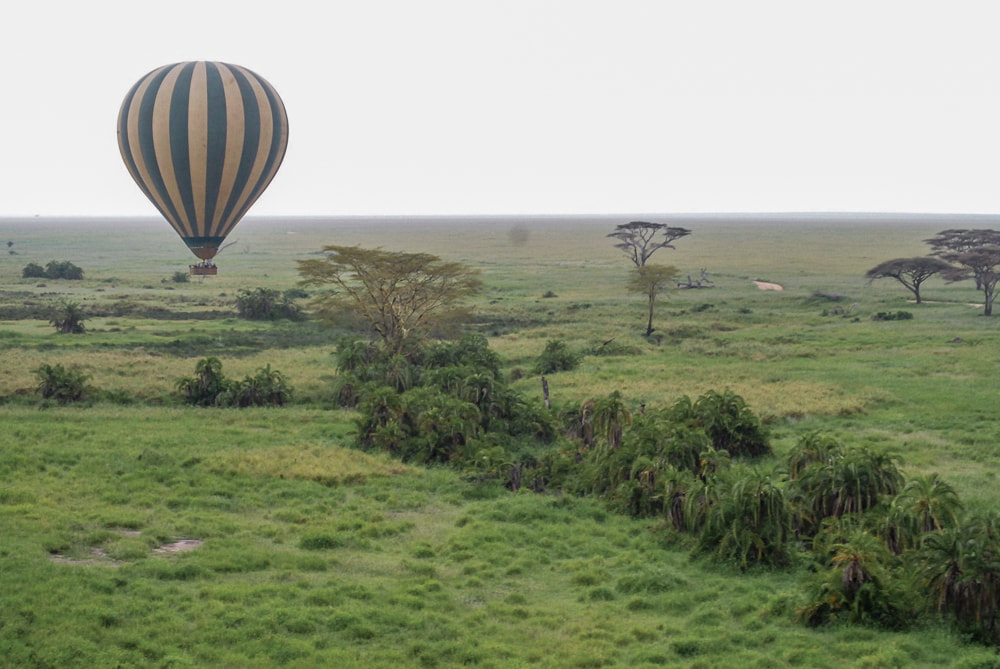 Hot air ballooning over Serengeti National Park, Tanzania