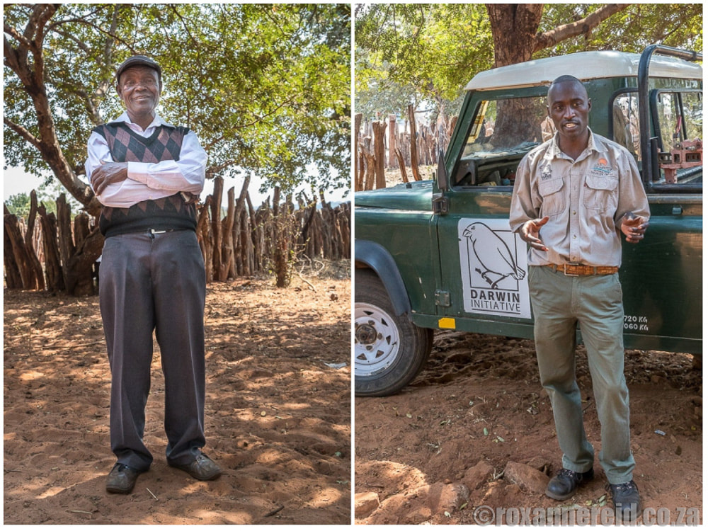 Victoria Falls Wildlife Trust and the Darwin initiative doing good work with community guardians and mbile bomas