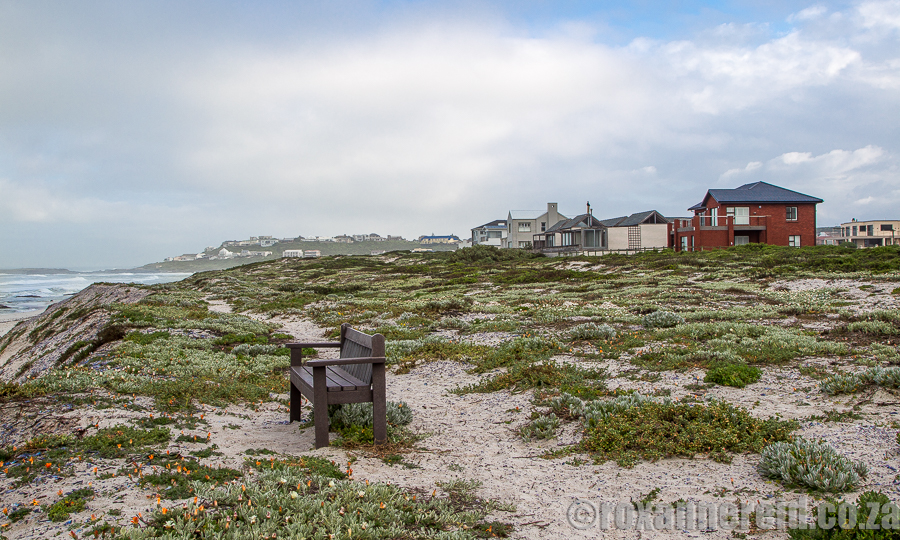 Urban Conservancy, Yzerfontein, West Coast
