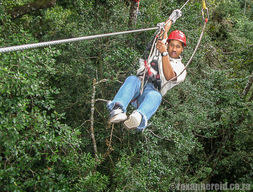 Things to do on the Garden Route - Tsitsikamma Canopy Tour