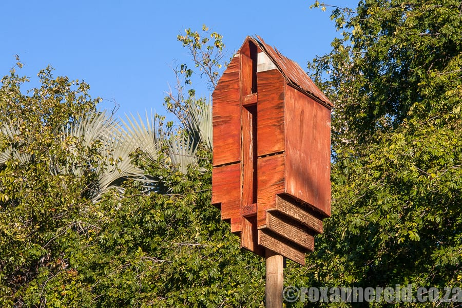 A bat roosting box. Kruger National Park