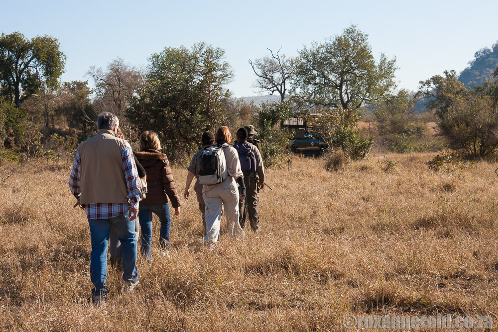 Bush walk at Berg en Dal in Kruger National Park, South Africa